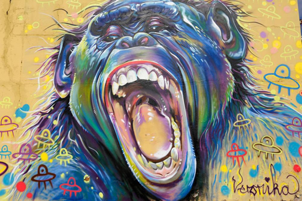 """Grafiti de la artista """"Veronika"""" que forma parte del proyecto Westdene Graffiti Project en Johannesburgo (Sudáfrica). El grafiti se consolida como forma de expresión artística en Johannesburgo, la Nueva York africana, donde ya hay visitas guiadas para conocer la obra de los creadores urbanos."""